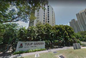 tulip-garden-sold-s9069-million-second-largest-en-bloc-deal-year
