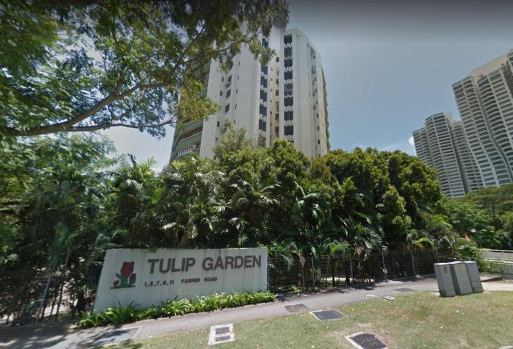 tulip-garden-sold-s9069-million-second-largest-en-bloc-deal-year